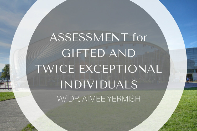 Gifted and Twice Exceptional